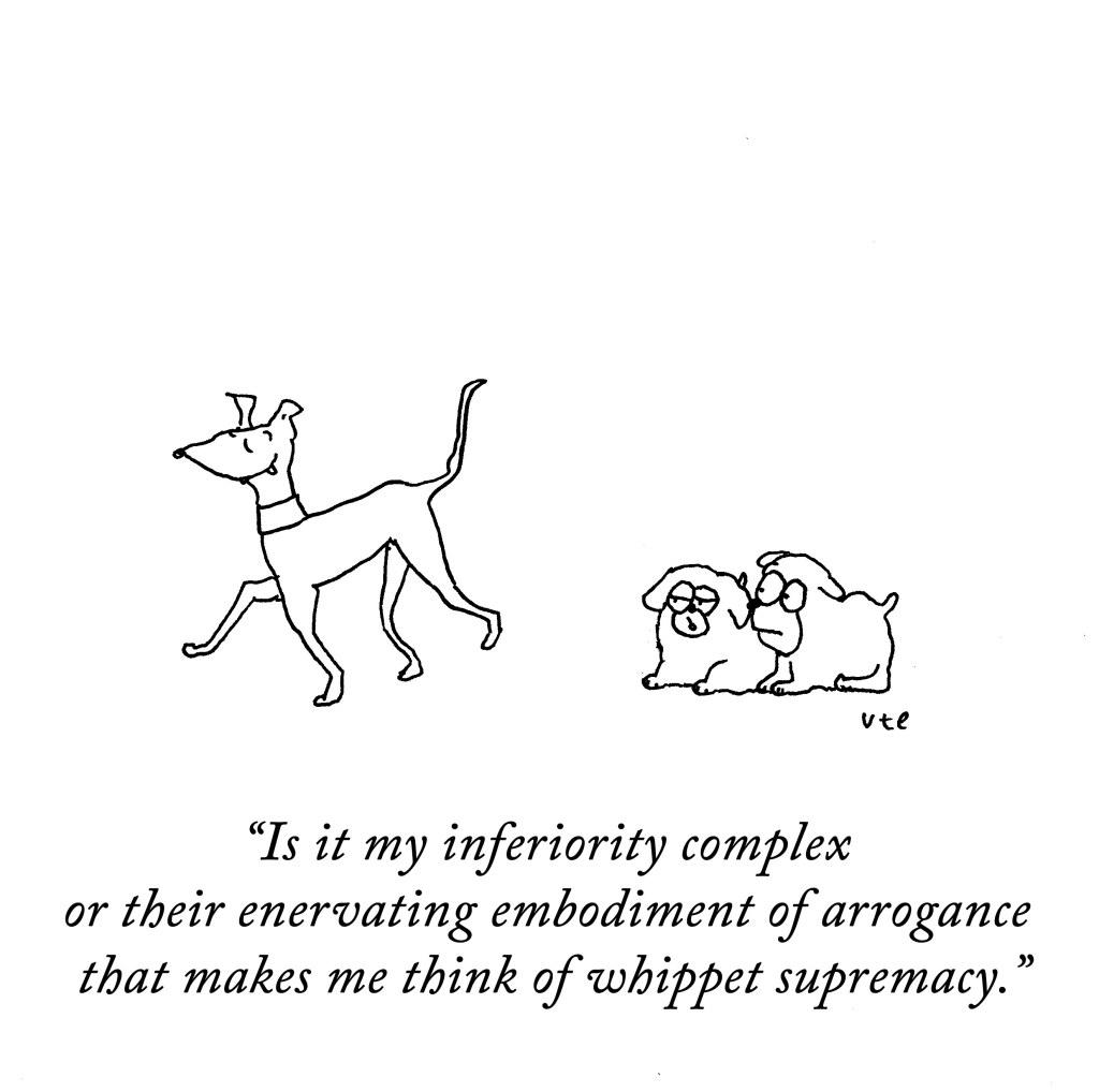 Dog Cartoon, Whippet Supremacy
